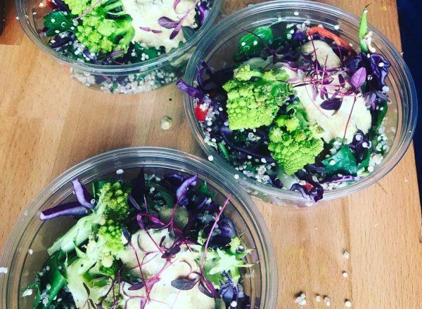 Salad Yogurt